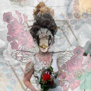 Animal Brides Series – Exhibition by Lisa Heisler